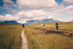 Von Paraitepui zum Camp Tek