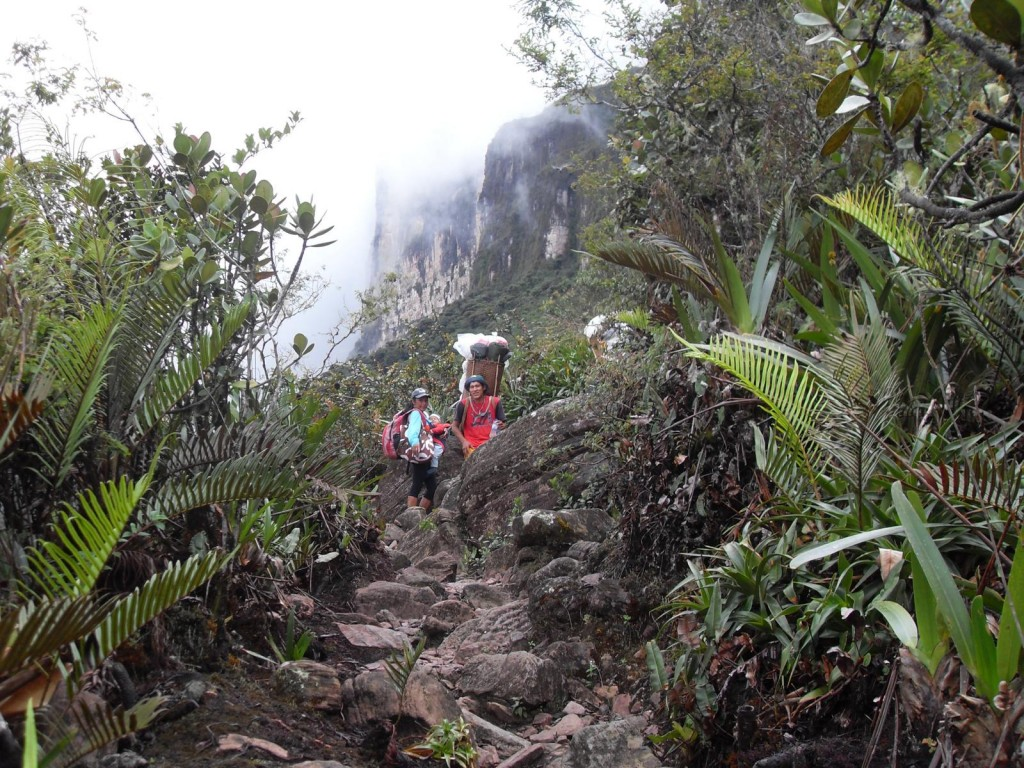 Roraima Trekking - Way up to the Summit
