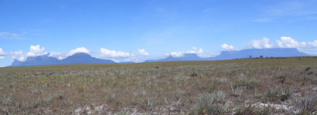 Gran Sabana - Eastern Table Mountains